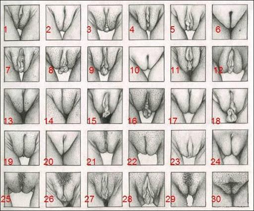 Louise porter full nude pics